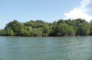 Koggala Lake Front