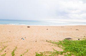 The-Perfect-Small Beach-Plot-001
