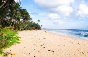 large-beachfront-plot-on-the-fabulous-talpe-beach-001