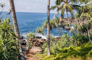 fabulous-land-commanding-ocean-views-003